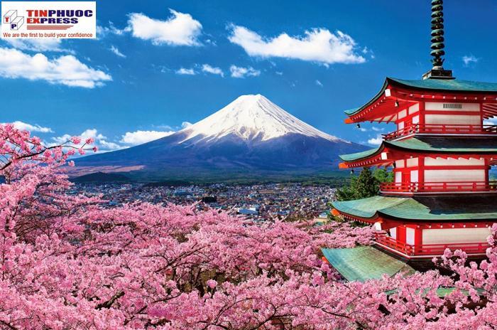 Chuyên tuyến Nhật Bản